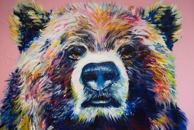 Bear pink background